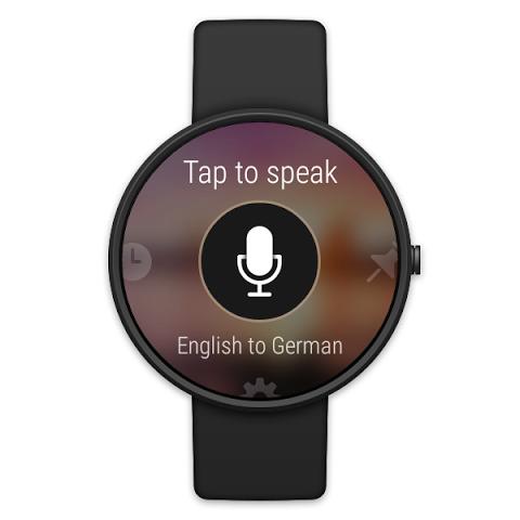 Microsoft Translator 3.1.250 Screen 10