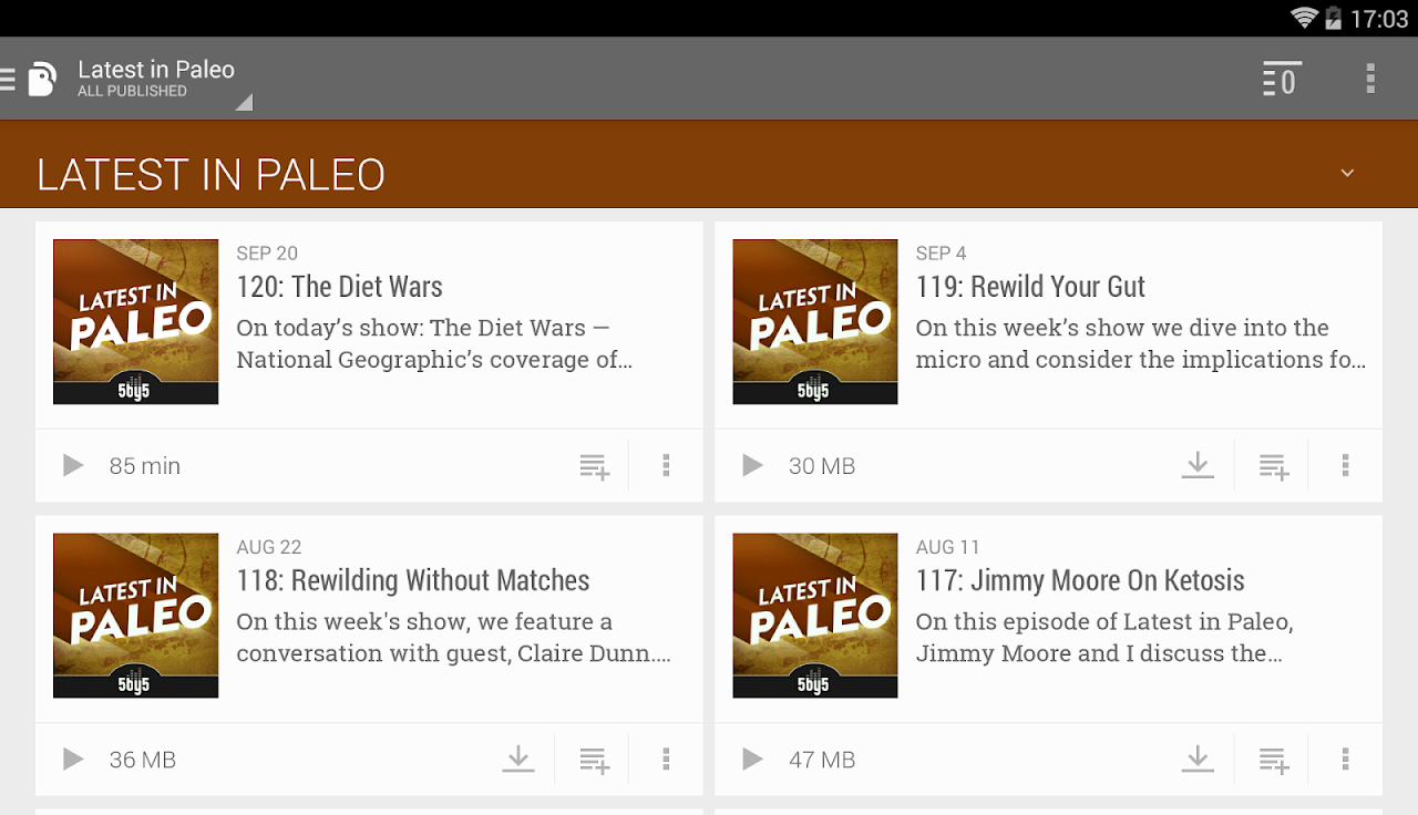 Android BeyondPod Podcast Manager Screen 18