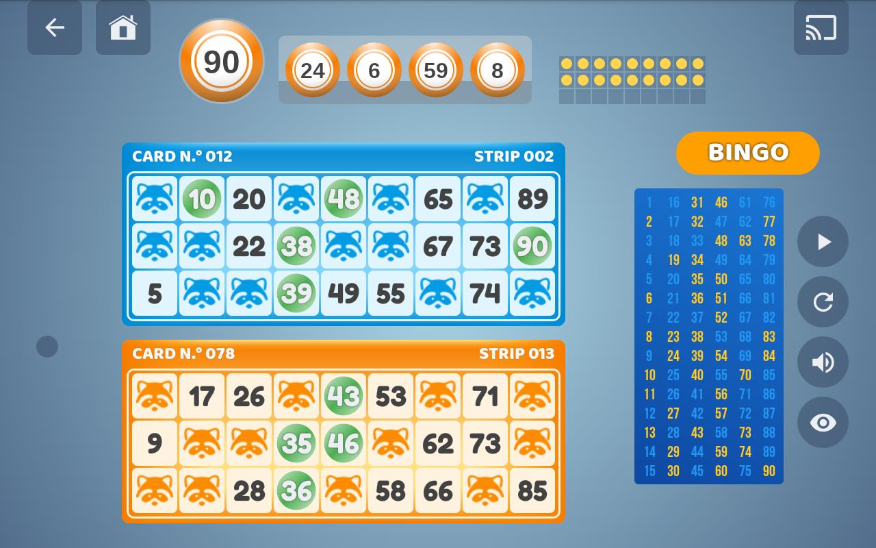 Bingo Set 1.3.0 Screen 12