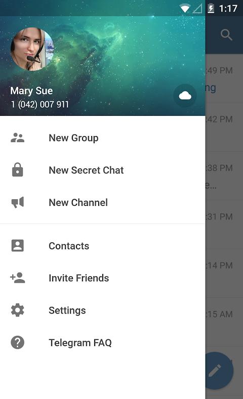 Telegram 4.9.1 Screen 7