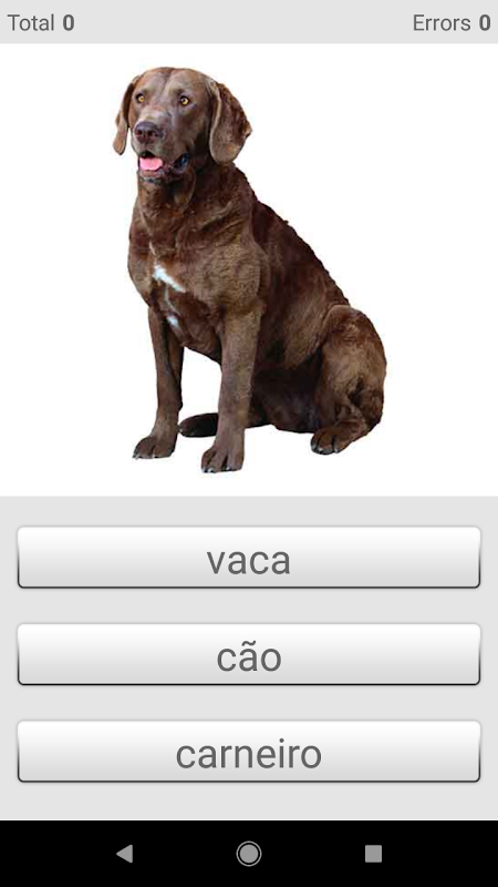 Android Learn Portuguese words with Smart-Teacher Screen 16