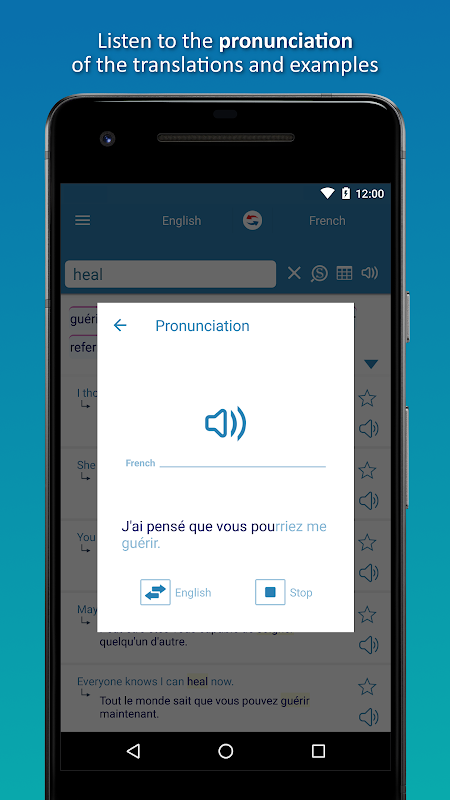 Reverso Translation Dictionary 8.4.0 Screen 4