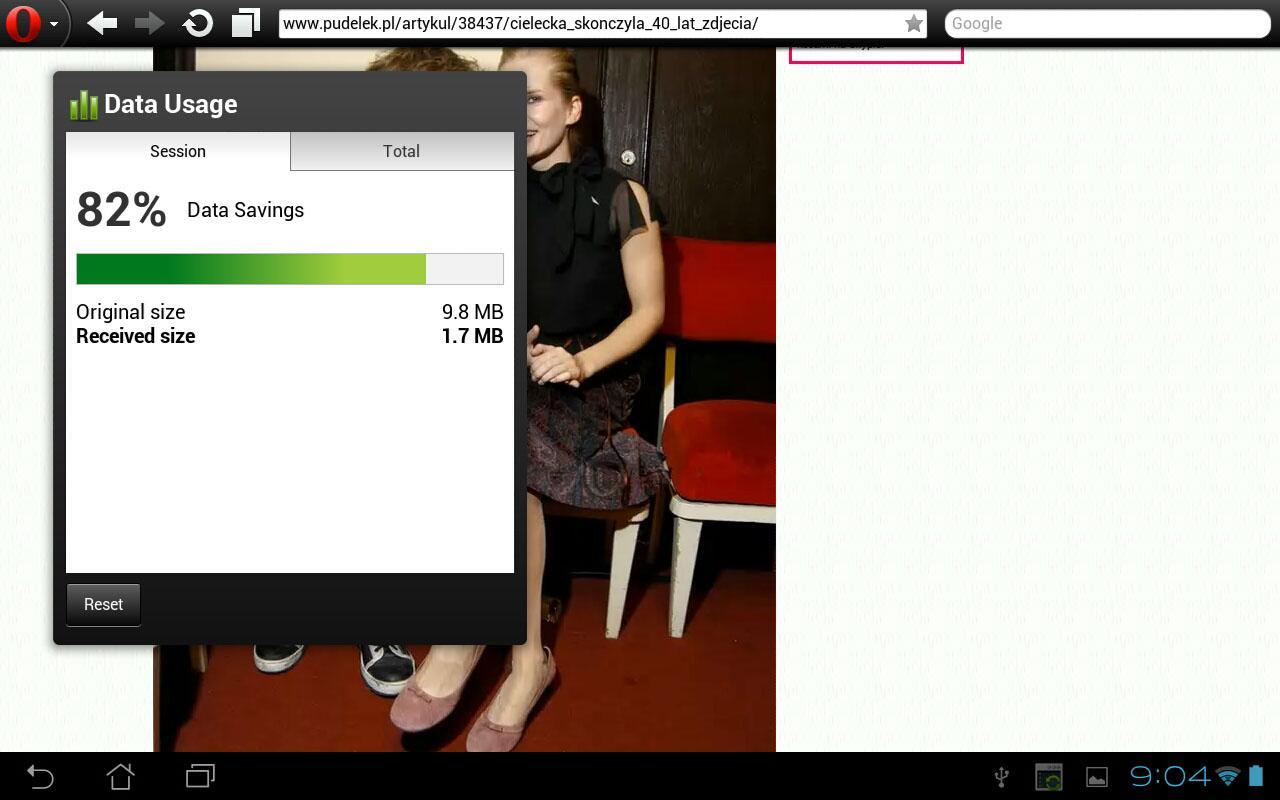 Android Opera Mini web browser Screen 5