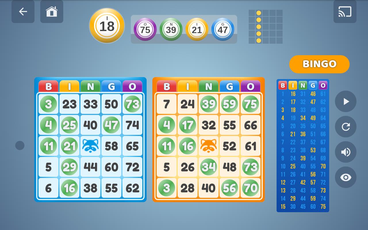 Bingo Set 1.3.0 Screen 8