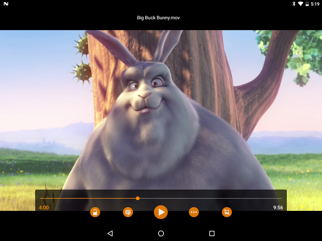 VLC for Android 3.1.0-RC4 Screen 18