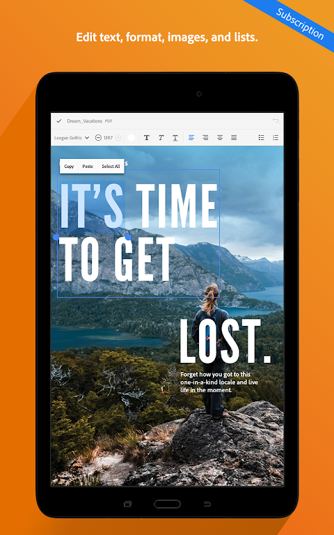 Adobe Acrobat Reader 19.3.0.9016 Screen 11