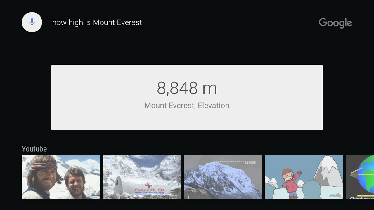 Google app for Android TV 3.4.1.204310203 Screen 2