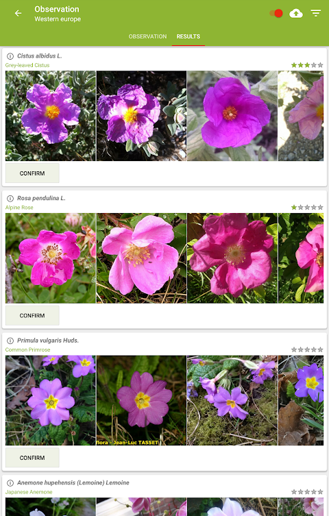 PlantNet Plant Identification 3.0.0 Screen 1