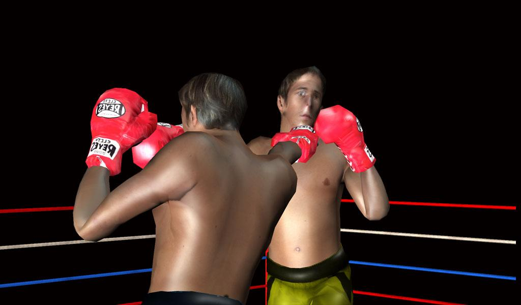 3D Boxing 2.3 Screen 6