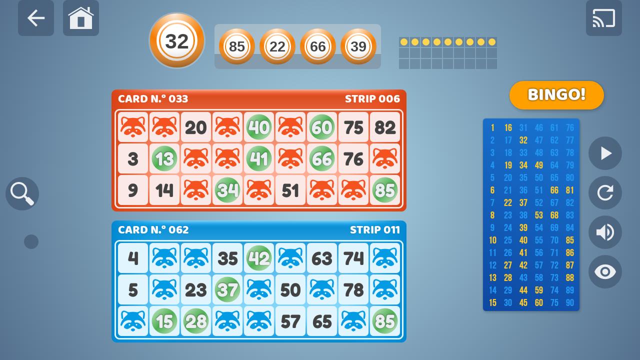 Bingo Set 1.3.0 Screen 5