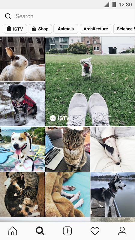 Instagram 120.0.0.0.28 Screen 4