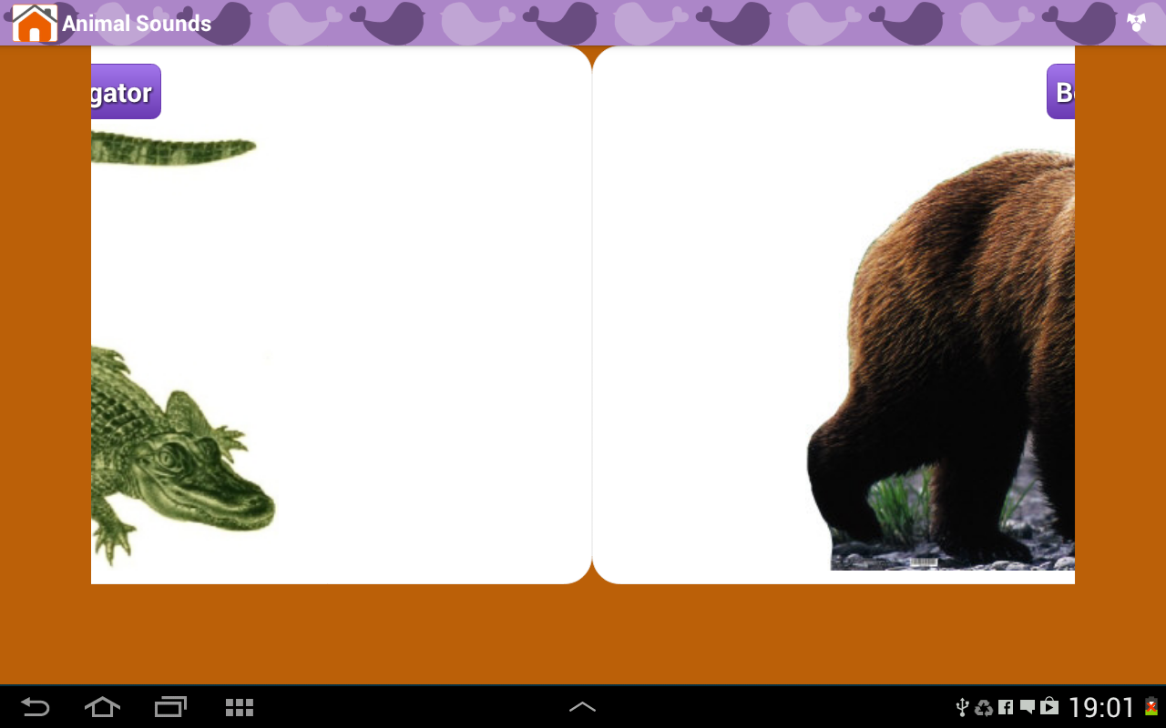 Android Animal Sounds & Talking Parrot Screen 8