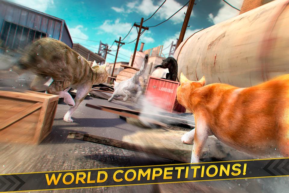 3D Cat Simulator Game For Free 1.0.1 Screen 1