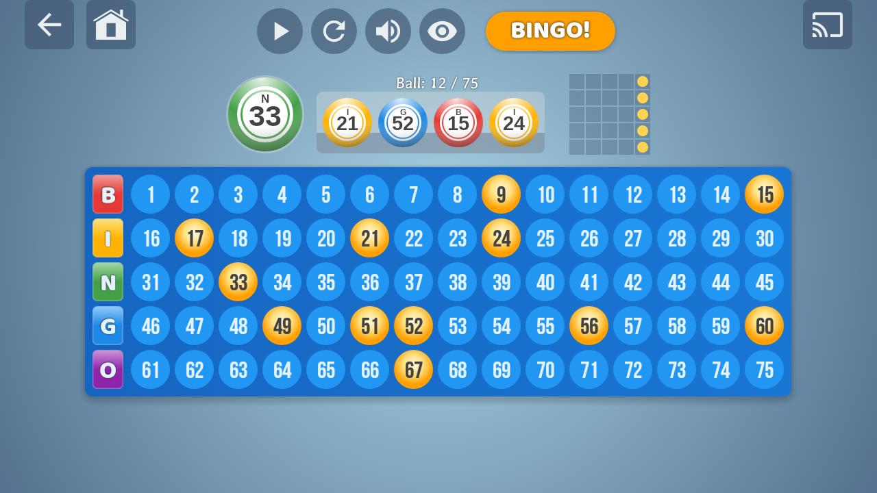 Bingo Set 1.3.0 Screen 3