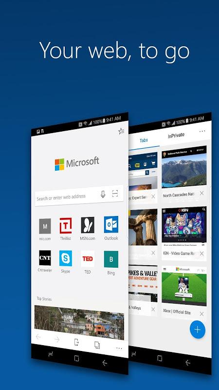 Microsoft Edge 42.0.24.3985 Screen 4