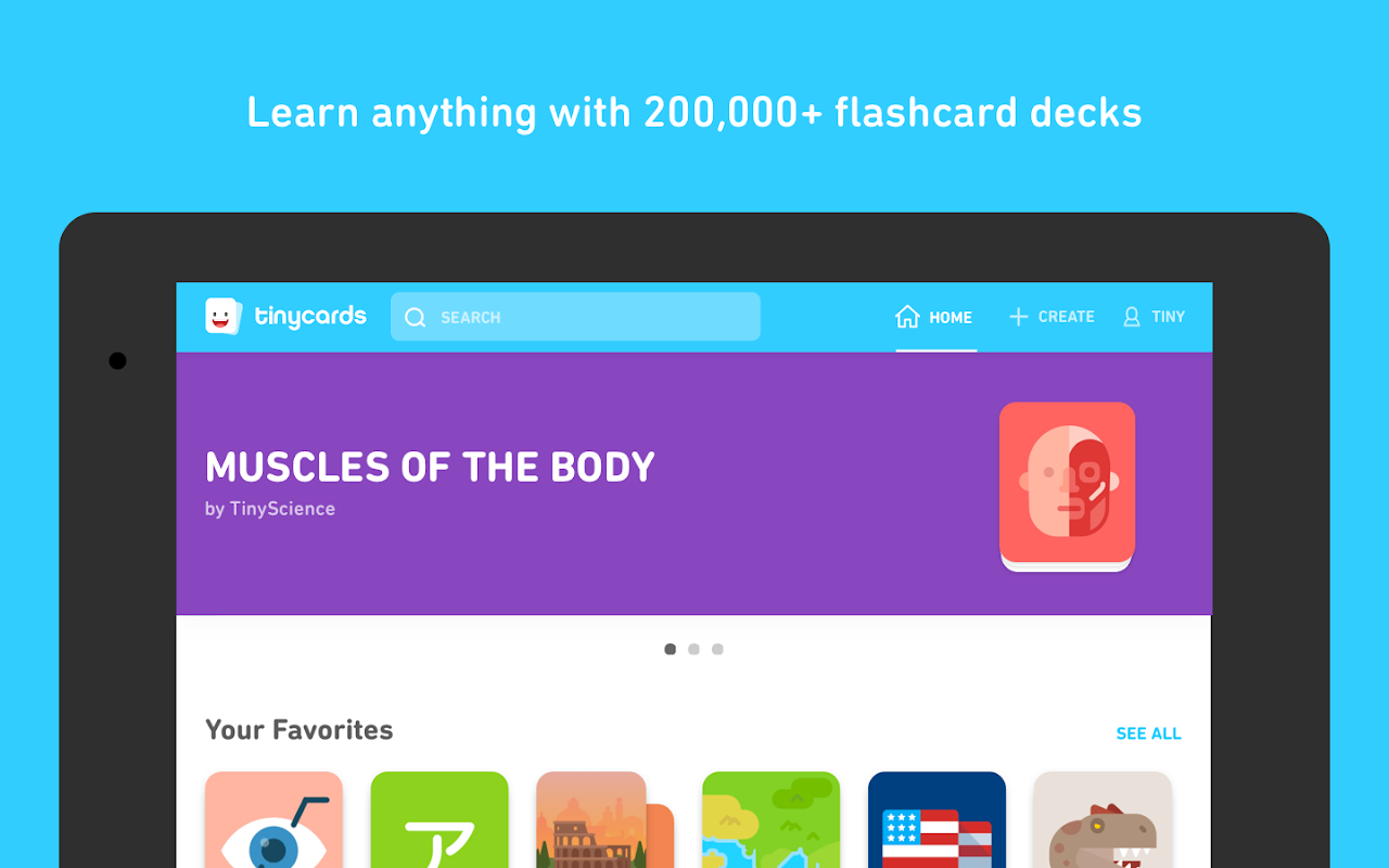 Tinycards by Duolingo: Fun & Free Flashcards 1.0 Screen 8
