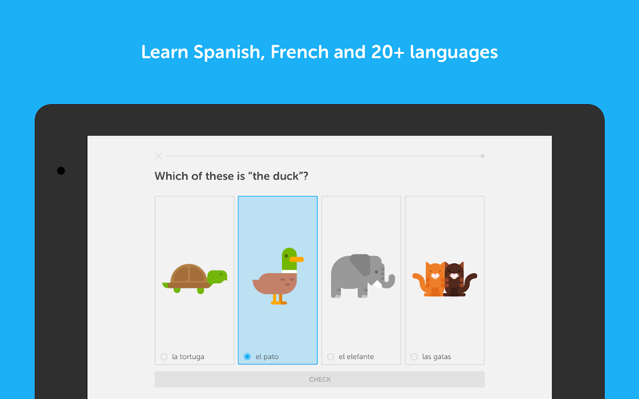 Duolingo: Learn Languages Free 3.106.5 Screen 5