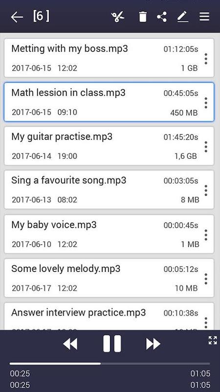 voice recorder pro 34 Screen 2