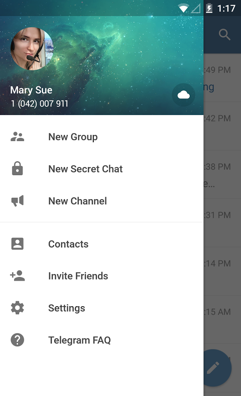 Android Telegram Screen 7