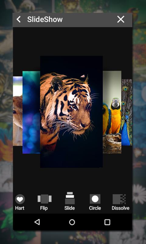 Gallery 1.18 Screen 5