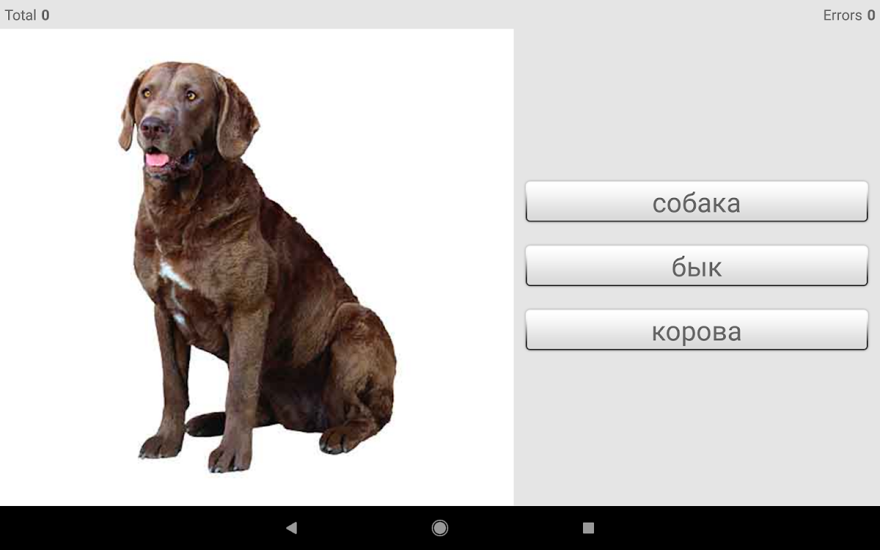 Android Learn Russian words with Smart-Teacher Screen 13