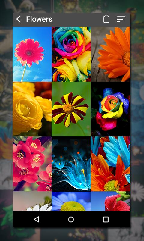Gallery 1.18 Screen 1