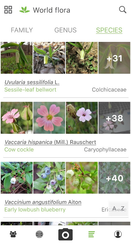 PlantNet Plant Identification 3.0.0 Screen 4
