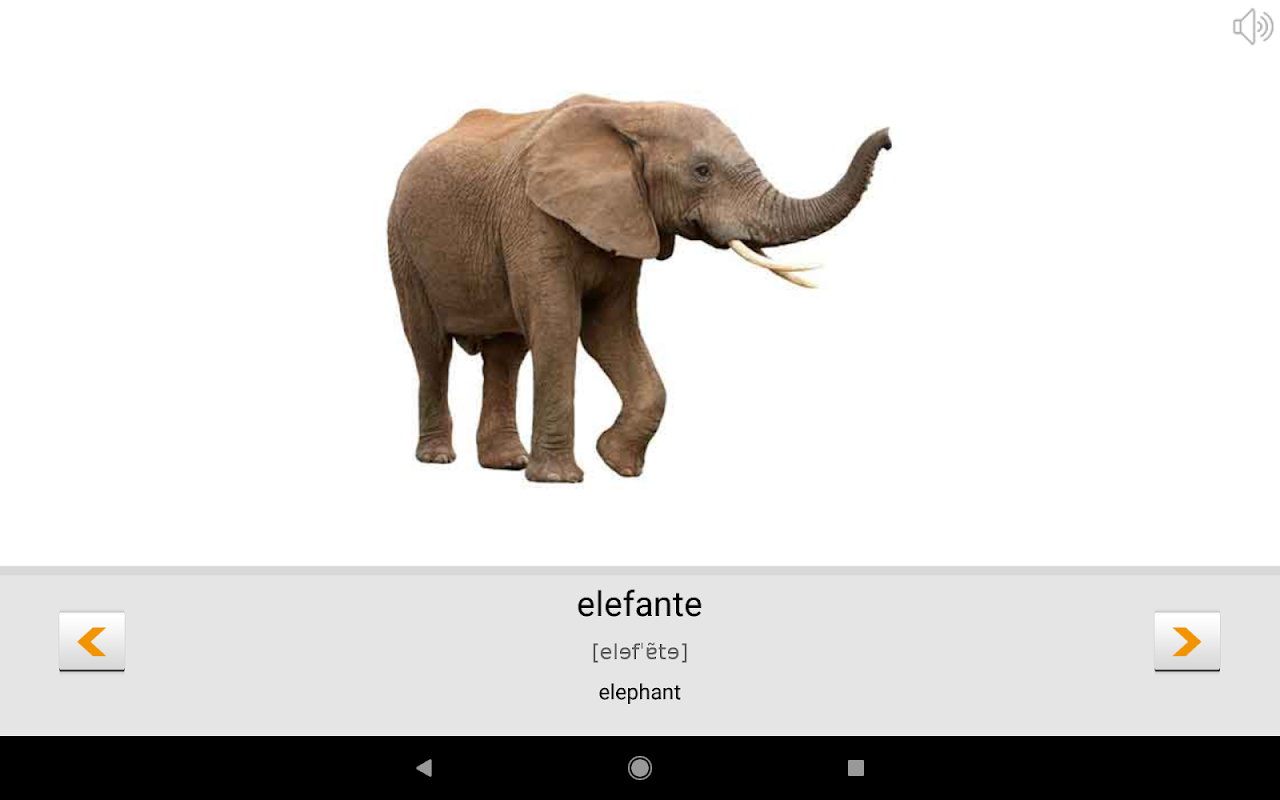 Android Learn Portuguese words with Smart-Teacher Screen 9