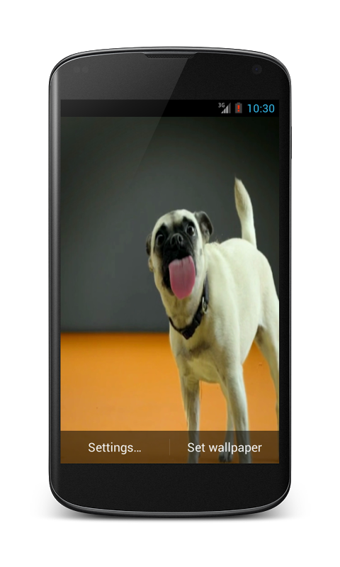 Android Dogs licking screen Wallpaper Screen 1